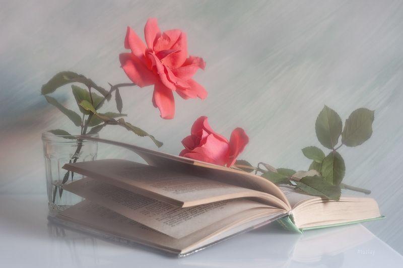 розы, книги, книга Книжно-розочная тема продолжается!photo preview
