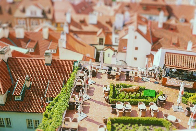 Praguephoto preview