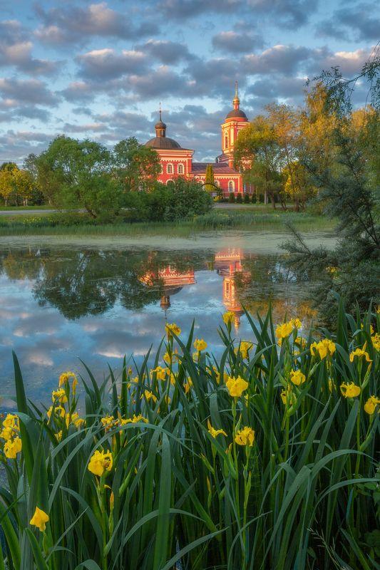 пейзаж, рассвет, отражение, Сертякино, Московская область, природа, ирисы, цветы, лето Летний рассветphoto preview