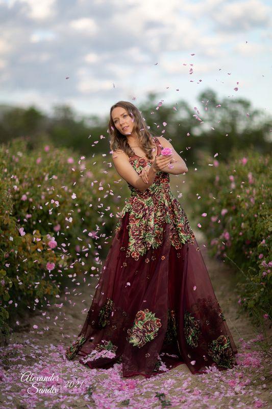Долина роз - фото пены Tamronphoto preview