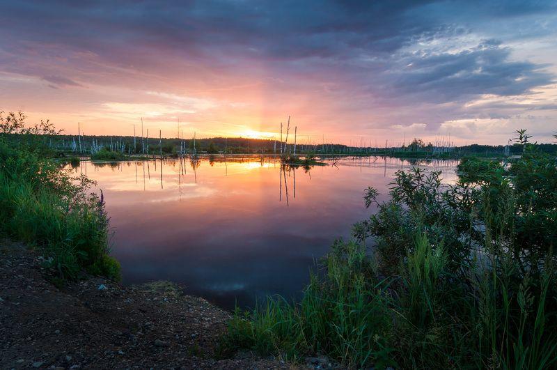 туман, московская область, утро, природа, пейзаж, весна, рассвет, солнце, болото Рассвет над болотомphoto preview