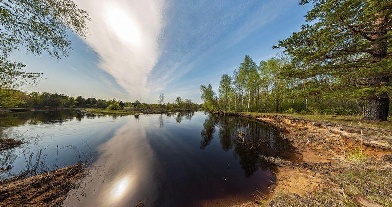половодье, большая вода, лесная река, весна, молодая зелень, мещёра, рязанская область Pro динамику Мещерской весныphoto preview