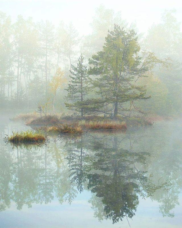 утро, туман, остров Утренняя магияphoto preview