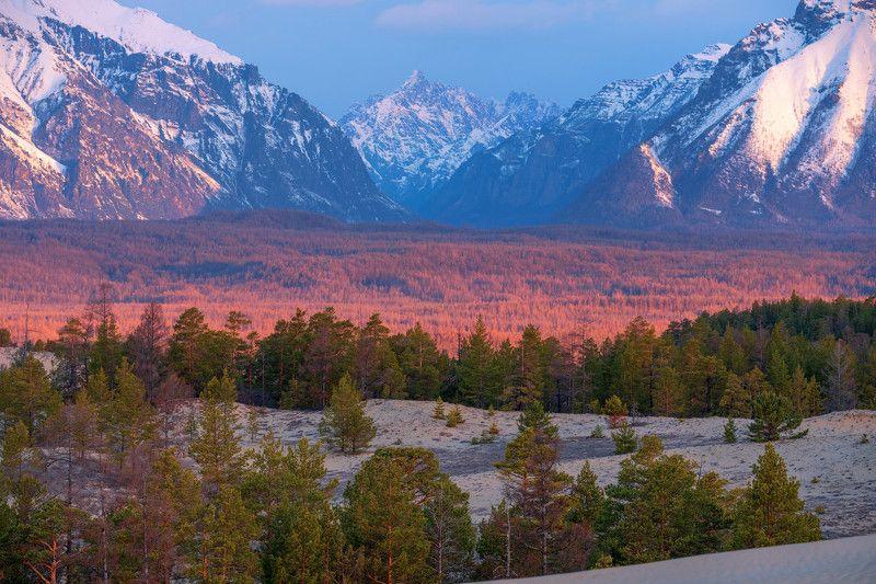 чарская пустыня,кодар,горы,забайкалье багряный лесphoto preview