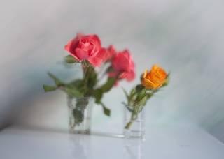 Фантазия с розово-желтым...