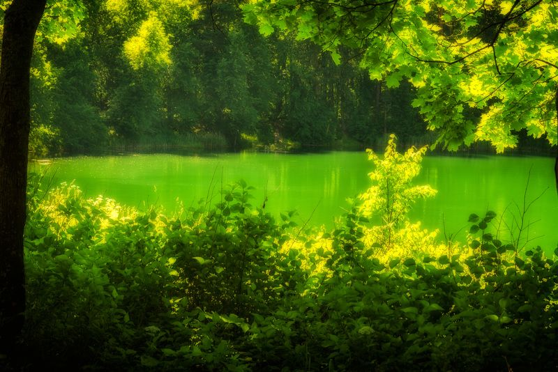 Изумрудная водаphoto preview