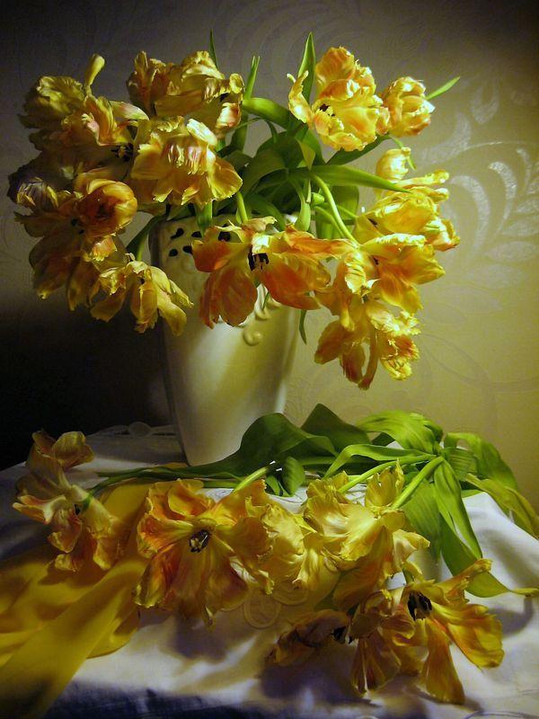 цветы, букет, тюльпаны, желтый цвет С желтыми тюльпанамиphoto preview