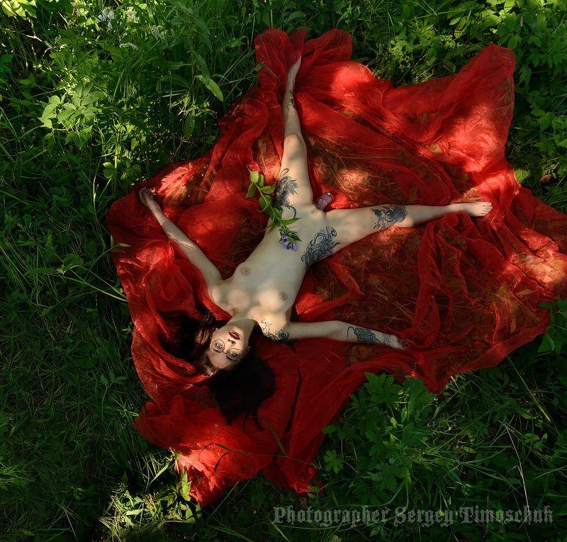 девушка лес Космос, как предчувствие...photo preview