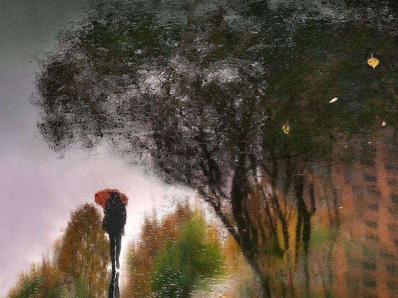 отражение, мокрый асфальт Ноябрьский сплин...photo preview