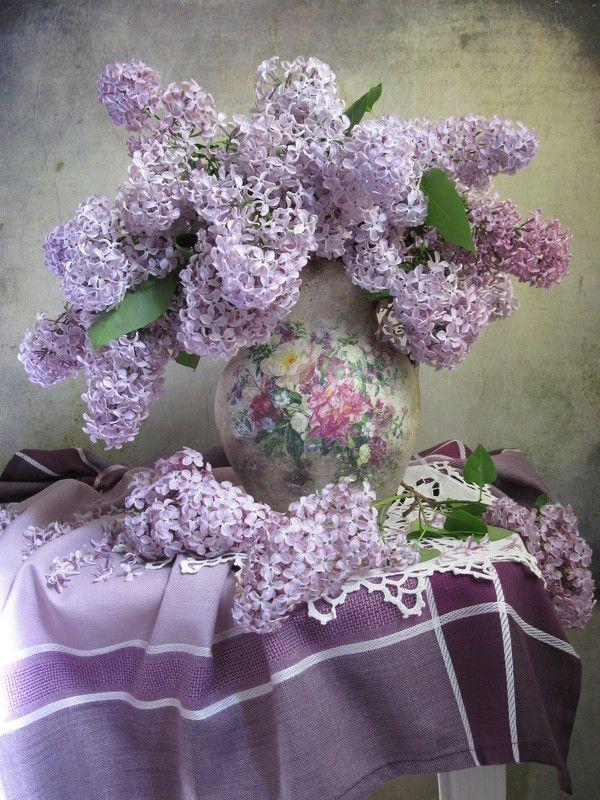 цветы, букет, сирень С сиреньюphoto preview