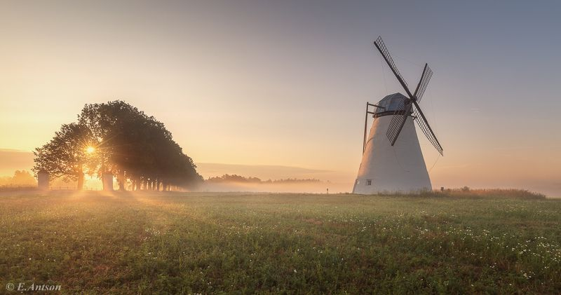 пейзаж, эстония Золотое утро фото превью