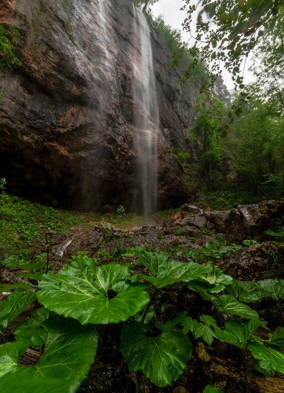 горы , скалы ,лес , водопад , мезмай Пальмовый водопадphoto preview
