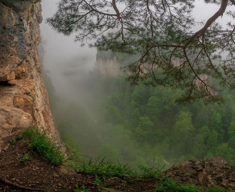 горы , скалы .каньон .туман ,курджипс , мезмай Туманы каньона Курджипсphoto preview