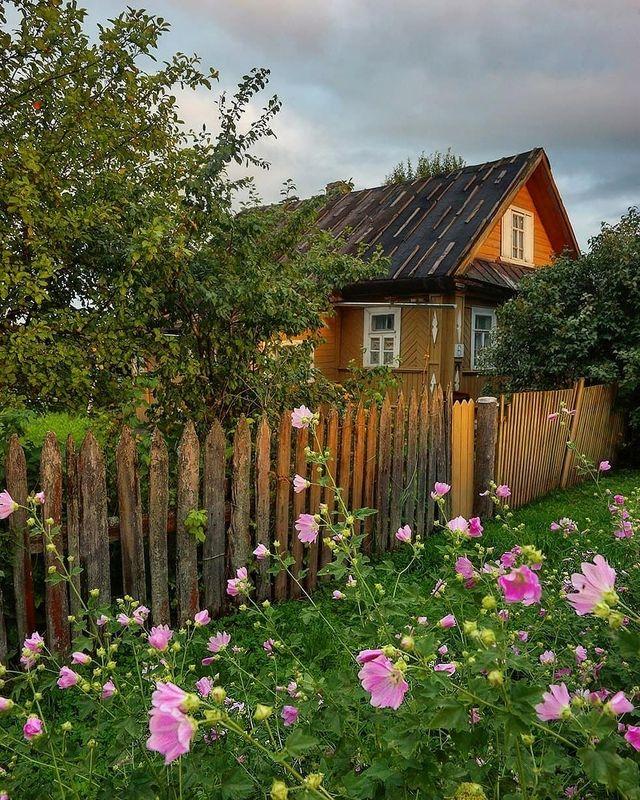 деревня, архитектура, цветы, изба Дом №6photo preview