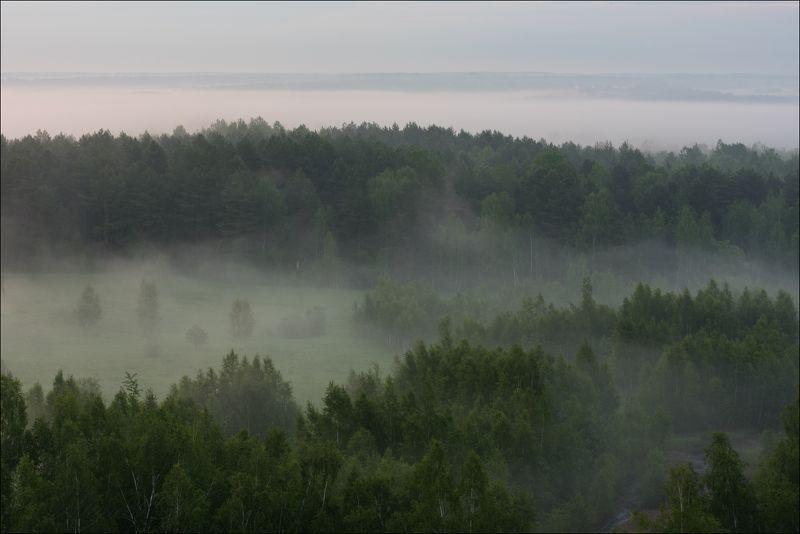 История одного туманного утраphoto preview