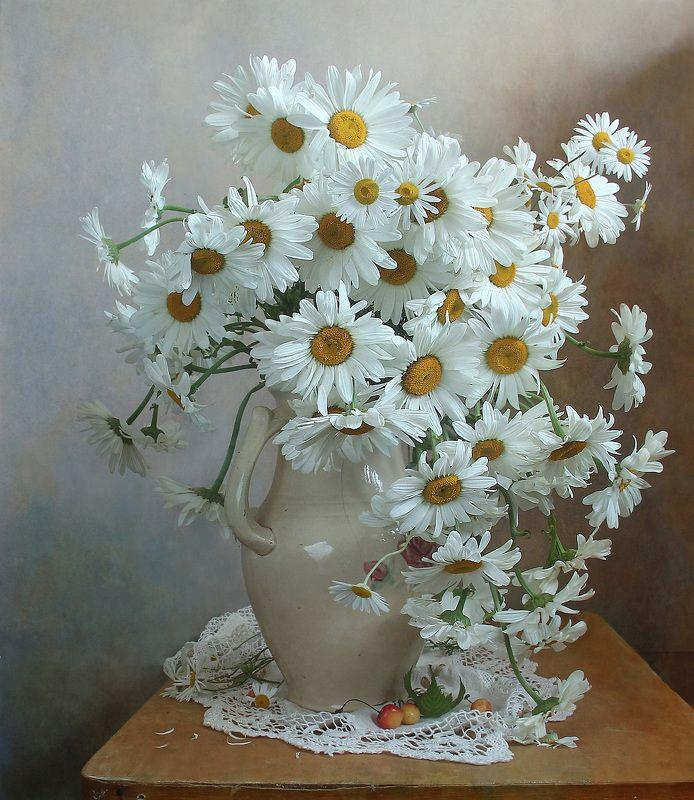 лето,  цветы, ромашки, натюрморт, марина филатова Ромашки нежные созданияphoto preview