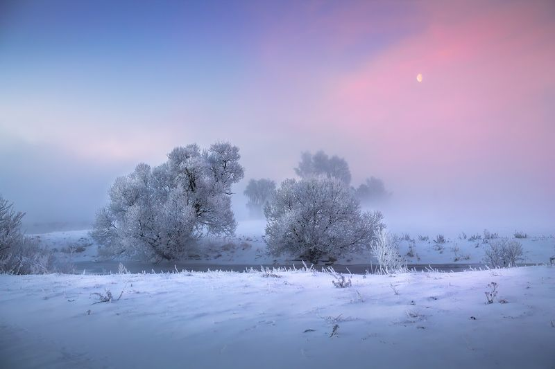 рассвет, зима, туман, иней, Зимнее утроphoto preview