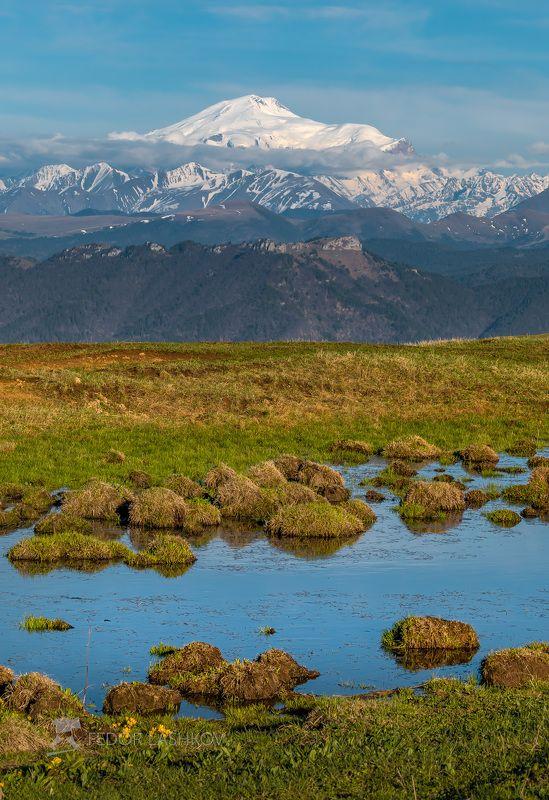 северный кавказ, карачаево-черкесия, луг, цветы, горы, гора, вершина, путешествие, туризм, эльбрус, весна, облака, горы в облаках, синий, зелёный, днём, дневное, Горные видыphoto preview