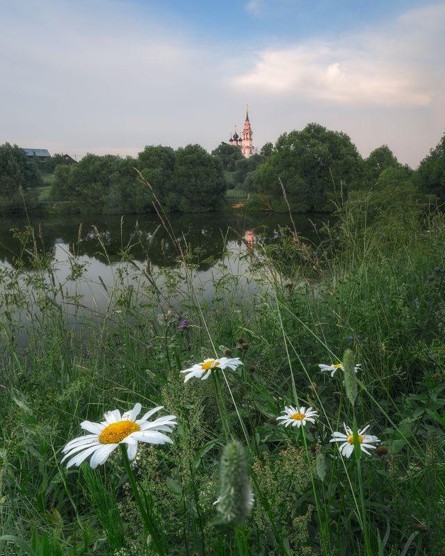 природа, закат, Россия, пейзаж, Валищево, церковь, Московская область, ромашки, цветы Летний вечерphoto preview