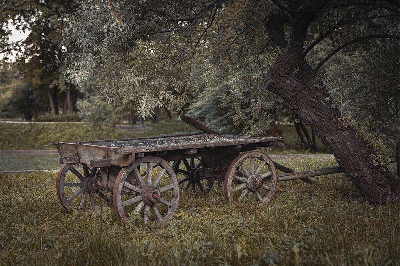телега, старый, пейзаж Старая телегаphoto preview
