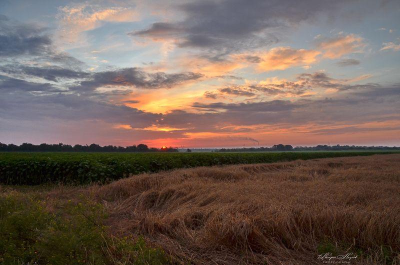 лето, июль, поле, закат, небо, облака Закат над полемphoto preview