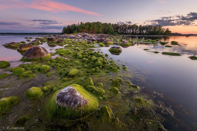 пейзаж,  природа,  море,  эстония Вечер в бухте фото превью