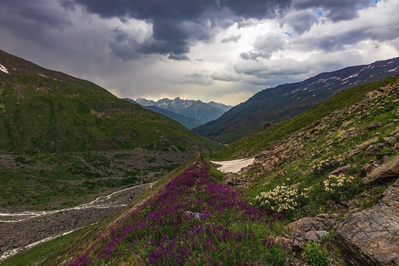 горы, альпинизм, кавказ, ледники цветочною тропой...photo preview