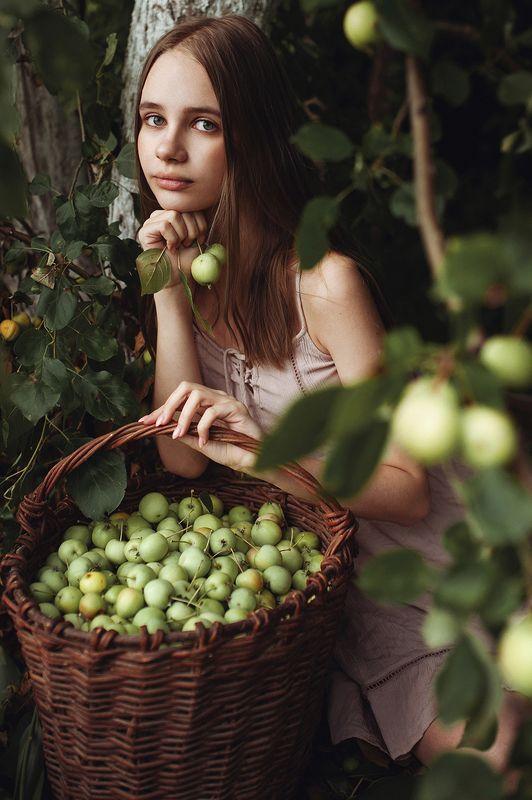 яблоки, портрет, девушка, сад Молодые яблочкиphoto preview