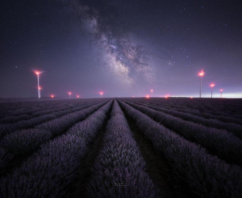 Purple nightphoto preview