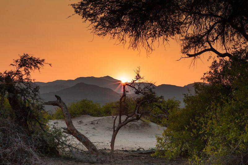 namibia, desert, sun, sunset, dunes Sunset in Namibian desertphoto preview