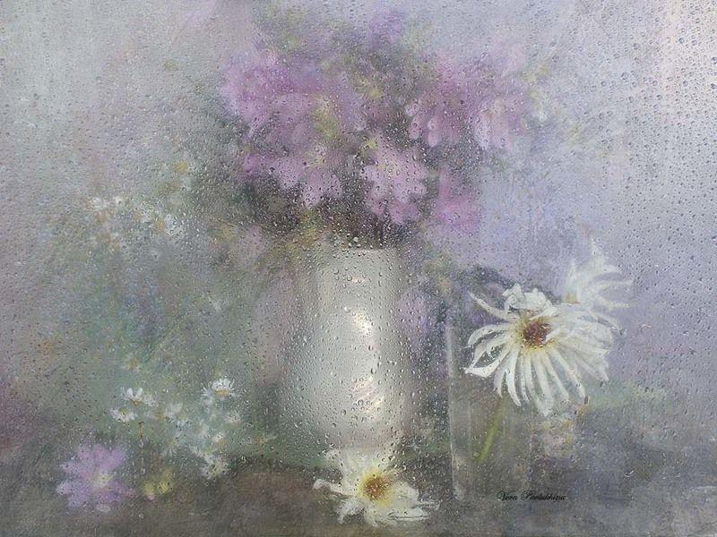 капли,стекло,цветы,лето,вера павлухина, Белые георгиныphoto preview