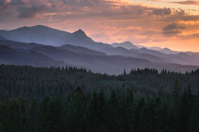 mountains, summer, poland, slovakia, sunset Evening in the Mountainsphoto preview