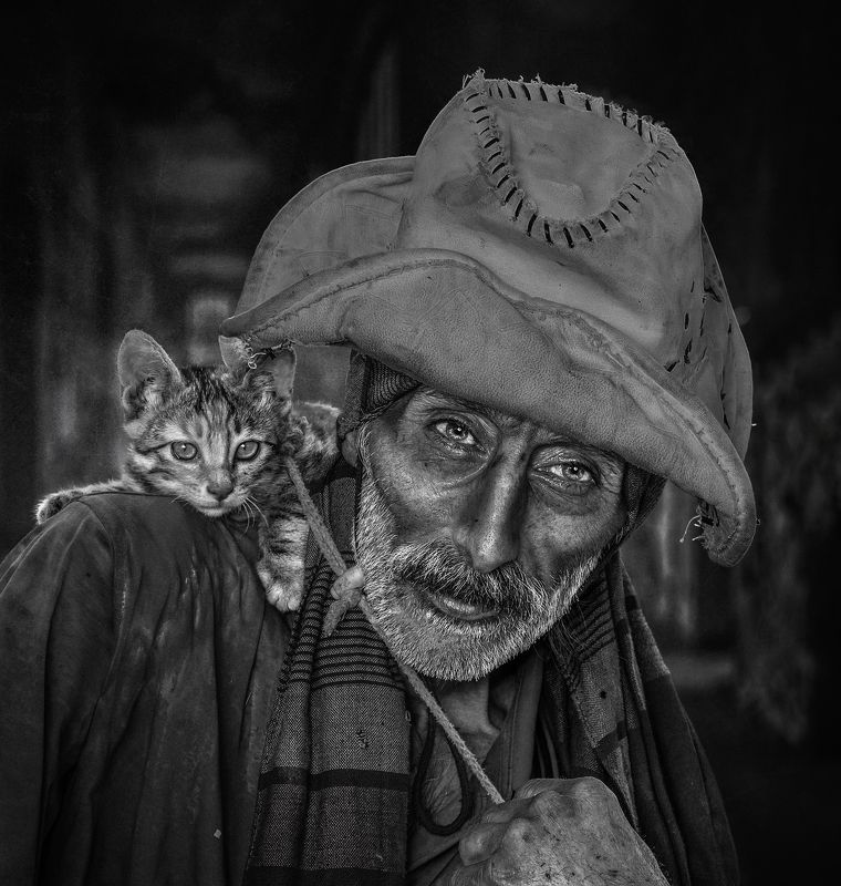 #portrait, #people, #pet, #cat The wealth of the sealphoto preview