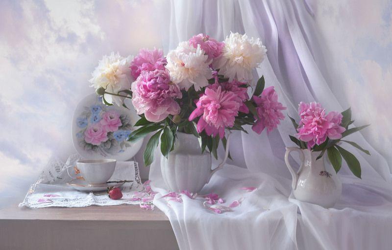 still life, натюрморт, цветы, фото натюрморт, пионы, настроение, лето, июль,  фарфор, ...словно яркие сны о цветах...photo preview