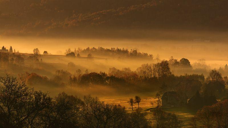 autumn, fall, season, mist, fog, poland, lesser poland, trees, village, golden hour, польша, осень, tranquility, forrest, rural, countryside, valley, outdoor, sunrise, morning, туман, Осеннее Впечатлениеphoto preview