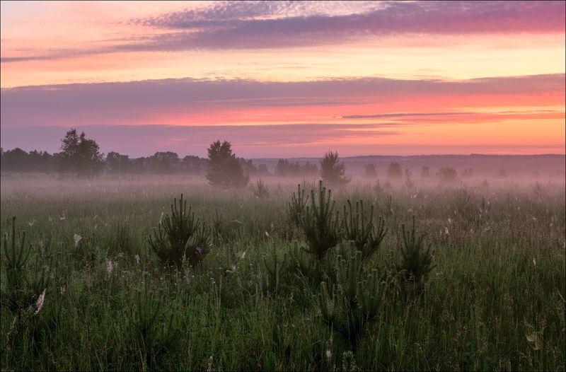 Июньские восходыphoto preview