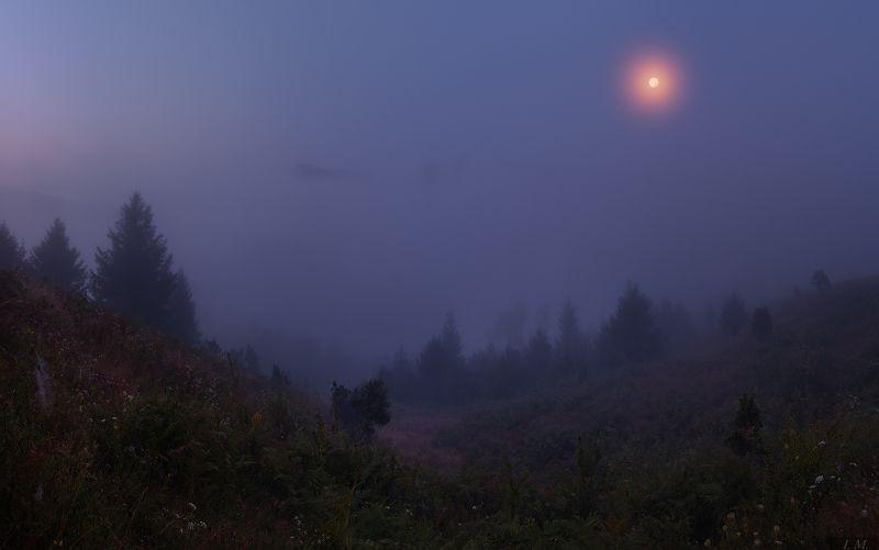 туман, ночь, Луна, река, Стрий, панорама, Сколовские Бескиды, полнолуние, горы, путешествие, night, foggy, mountains, Skolevsky Beskydy, river, Stryi, valley, fog, mist, panorama, moon, light, misty ***photo preview