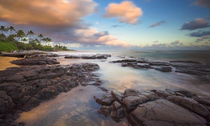 На закате дня в раю.photo preview