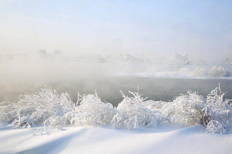 Winterphoto preview