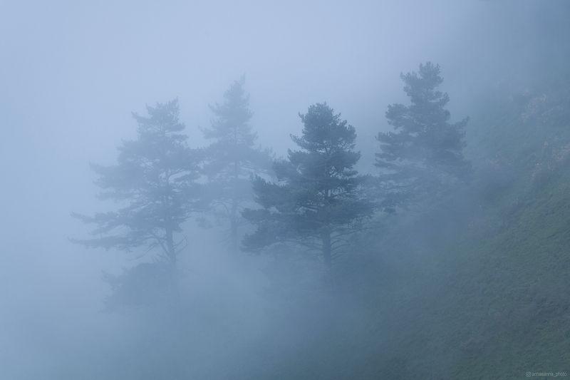 Облачные горы Ингушетииphoto preview