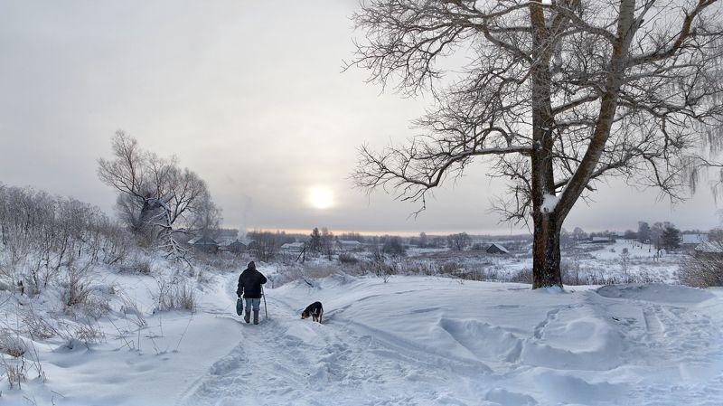 зима, деревня, мороз, снег, дерево, старик, пес По дороге в зиму...photo preview