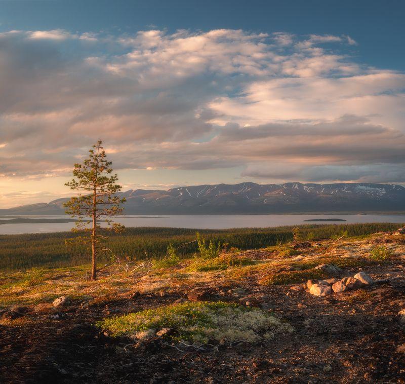 кольский,север,пейзаж,россия,горы,хибины,лето,север Летние дниphoto preview