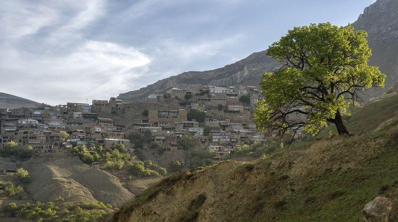 утро, селение, дагестан Дагестан. Чох.photo preview