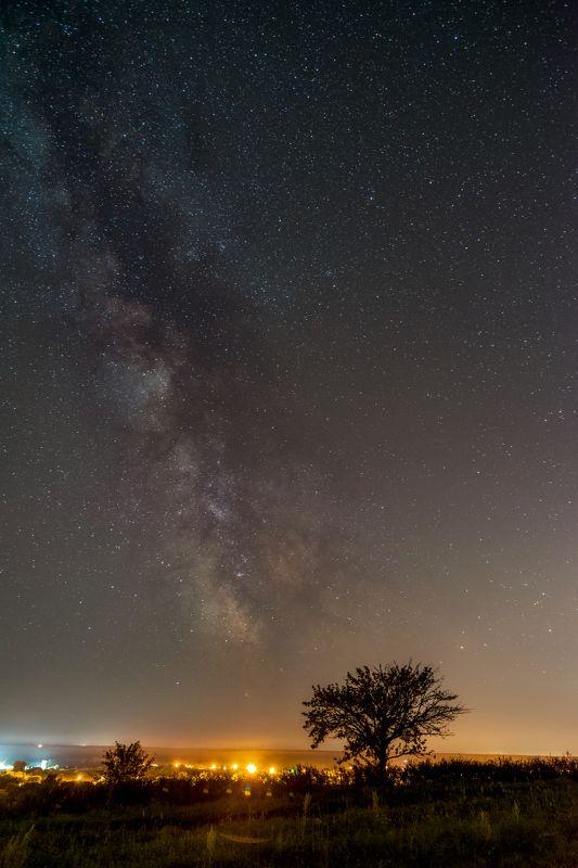 milky way, млечный путь, бекарюковский бор, bekaryukovsky forest,ночь, night Milky Wayphoto preview