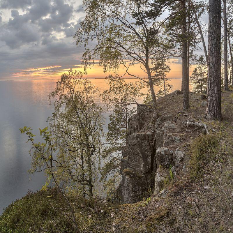 лето, вечер, озеро, ладога, архипелаг, остров photo preview