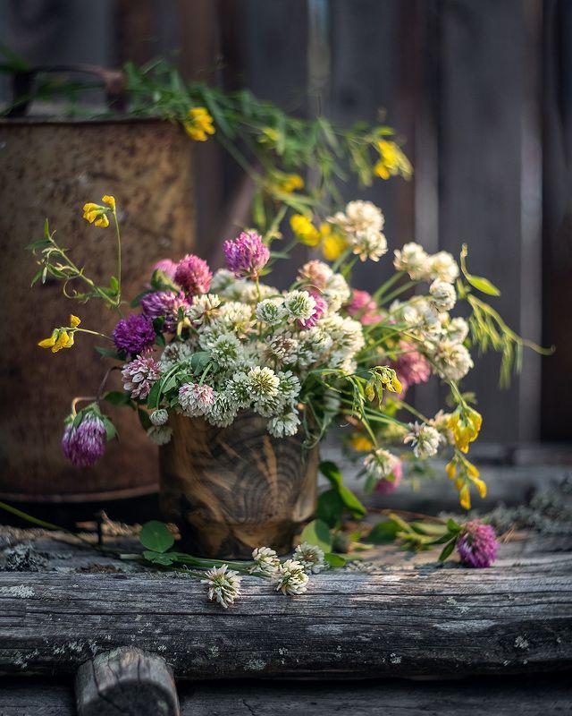 букет клевер цветы лето натюрморт Душистый клеверphoto preview