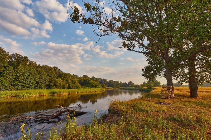 беларусь, дубрава, июль, лето, луга, рассвет, река, свислочь, утро Летнее утро на рекеphoto preview