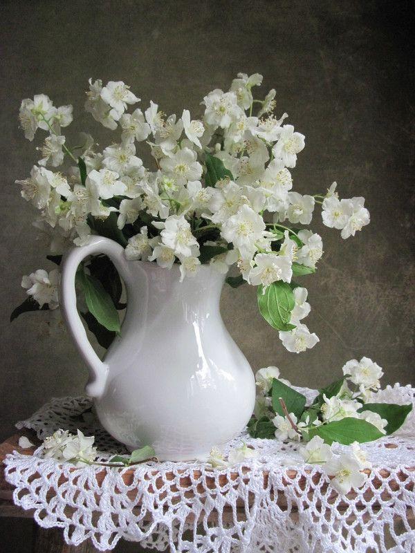 цветы, букет, жасмин, кувшин, фарфор, салфетка С жасминомphoto preview