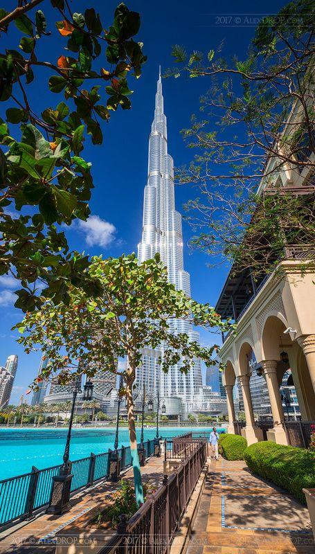 Полдень, почти ни души - и это в самом сердце Дубая