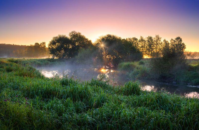 лето, утро, река, дымка, Утром у рекиphoto preview